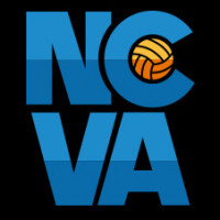 2019 No Dinx / NCVA March Madness logo